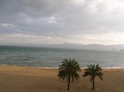 11. La plajă